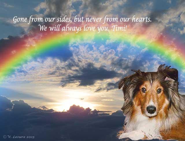 Rainbow Timi